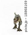 ティラノサウルスのおもちゃ 18868169