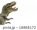 びっくりしているティラノサウルス 18868172