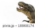 驚いているティラノサウルス 18868174