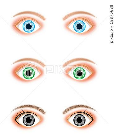 外国人の瞳のイラスト素材 18876688 Pixta