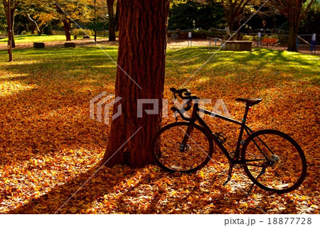 CYCLING TIME (267) 18877728