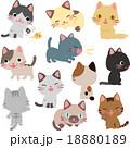 猫のイラストセット 18880189
