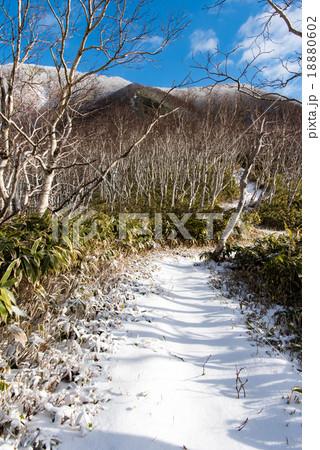 登山道の雪 18880602