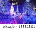 カレッタ汐留イルミネーション 18881381