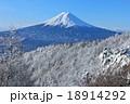真冬の富士山と樹氷風景 18914292
