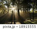 朝霧 朝日 太陽の写真 18915555