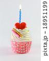 birthday cupcake 18951199