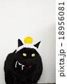 黒猫と手編みの鏡餅 18956081