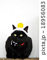 黒猫と手編みの鏡餅 18956083