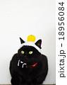 黒猫と手編みの鏡餅 18956084