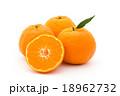 マンダリンオレンジ:mandarin orange 18962732