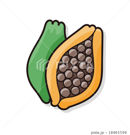 fruits papaya doodleのイラスト素材 [18965599] - PIXTA