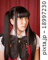 Akihabara(利用可能な用途と禁止事項を確認して下さい) 18997230