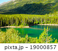 カナダ、ツンドラの中にある緑色の池 19000857