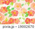 椿柄 背景素材 19002670