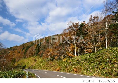 赤井川村冷水峠の紅葉の写真素材 [19009735] - PIXTA