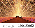 light tunel in winter illumination in Mie, Japan 19015062