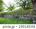 小松城 19018548