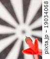 Red flying dart to dartboard 19034068