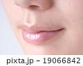 唇 女性 口の写真 19066842