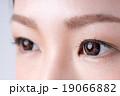瞳 目 女性の写真 19066882