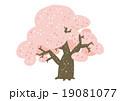 桜 桜の木 春のイラスト 19081077