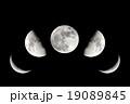 月 満月 半月の写真 19089845