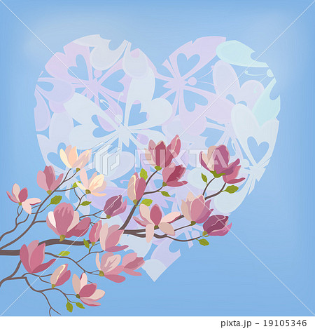 magnolia flowers and valentines heartのイラスト素材 19105346 pixta