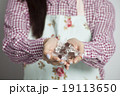 バレンタイン・女性・手作り 19113650