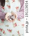 バレンタイン・女性・手作り 19113654