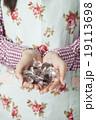 バレンタイン・女性・手作り 19113698