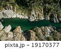 四国三郎こと吉野川、大歩危(おおぼけ)峡 シーズン中はラフティングが盛ん 19170377