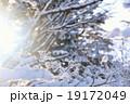 冬の樹氷風景 19172049