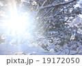 冬の陽射しとダイヤモンドダスト 19172050