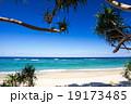 ビーチ 海 リゾートの写真 19173485
