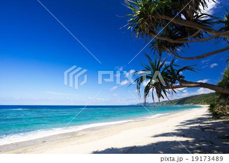 沖縄のビーチ・謝敷の浜 19173489