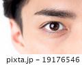 若い男性(瞳)  19176546