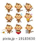 猿のセット 19183630