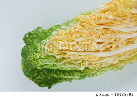 茨城県産オレンジ白菜 19185793