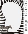 Border design with zebra skin pattern 19214919