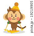 スキーをする猿 19219905