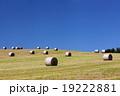 青空 丘 牧草ロールの写真 19222881