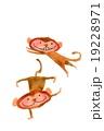 曲芸猿 19228971
