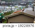 自然災害(天災・災害・台風) 19228976