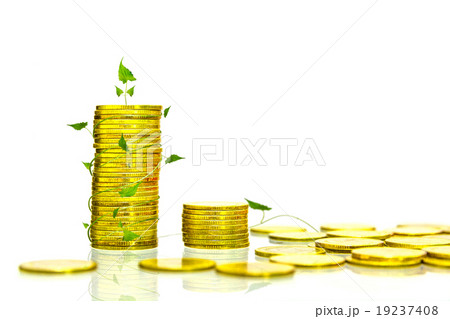 The coin gold color on white isolate background.の写真素材 [19237408] - PIXTA