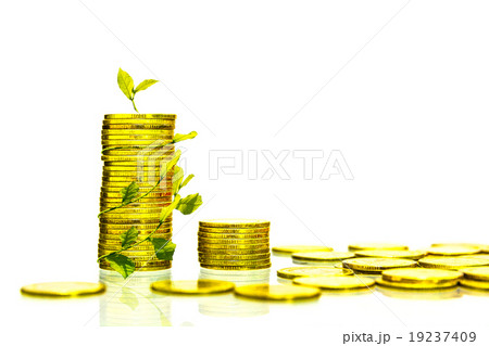 The coin gold color on white isolate background.の写真素材 [19237409] - PIXTA