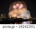 花火 19242301