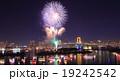 お台場レインボー花火 19242542