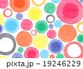 水彩 丸 模様 背景 19246229