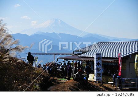 清水茶屋より富士 19247698
